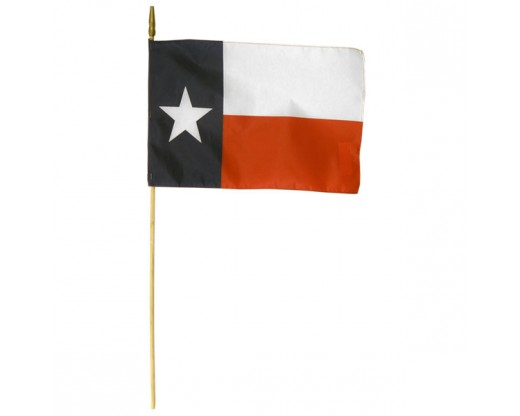 Texas State Stick Flag