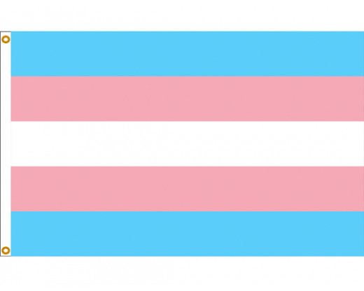 Transgender Pride Helms Flag