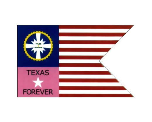 Tylers Guard Texas Guidon Flag - 3x5'