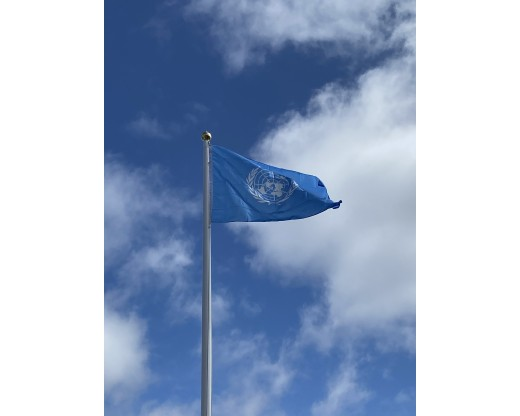 United Nations Flag In use