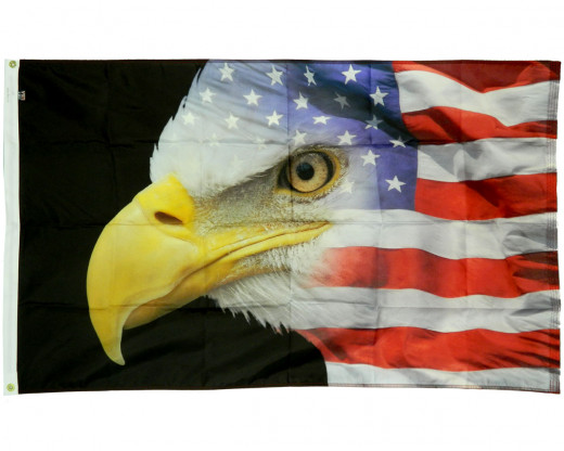 U.S. Eagle Flag Photo