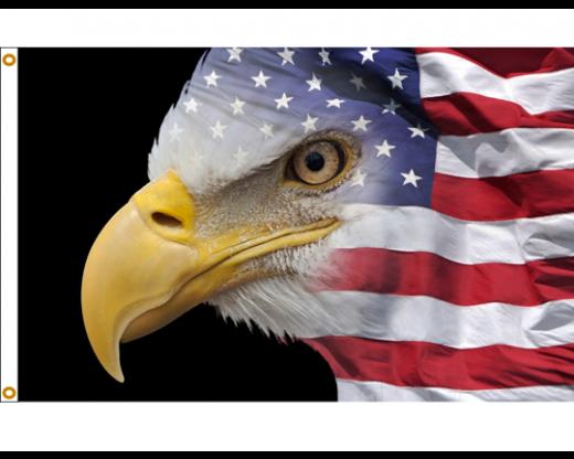 U.S. Eagle Flag
