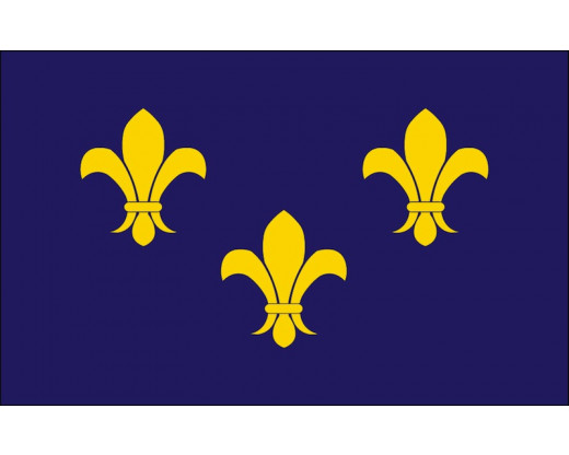 3 fleur de lis on a blue flag