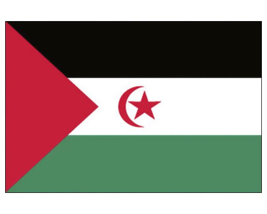 Western Sahara Flag