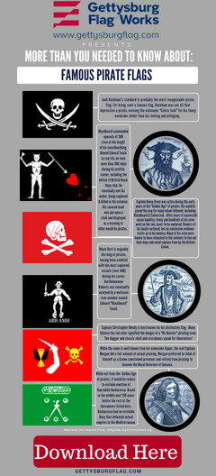Pirate Flags Infographic
