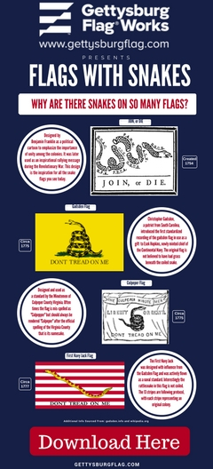 Snakes Infographic